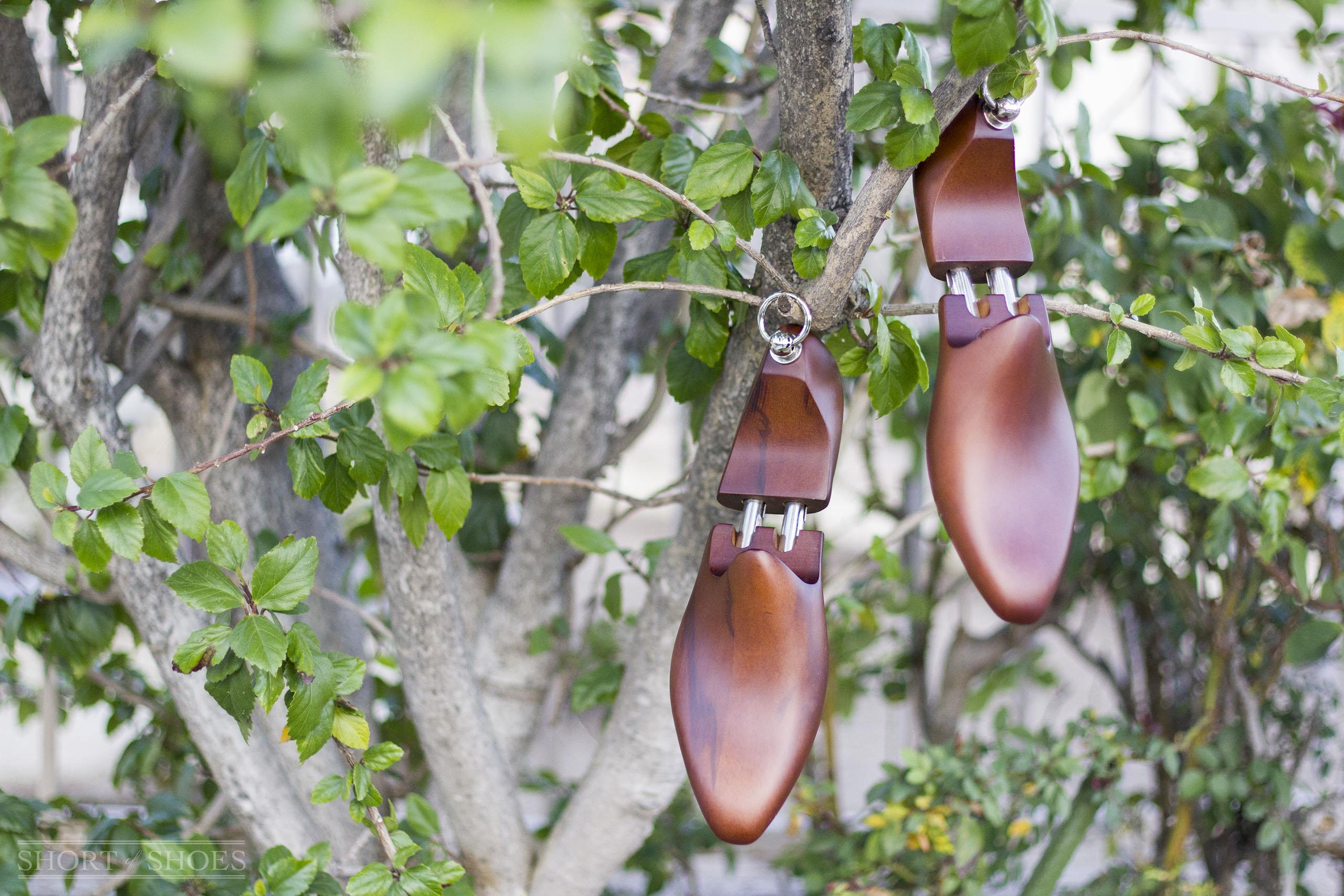 b97ef8e5d Kent Wang Beechwood Shoe Tree Review